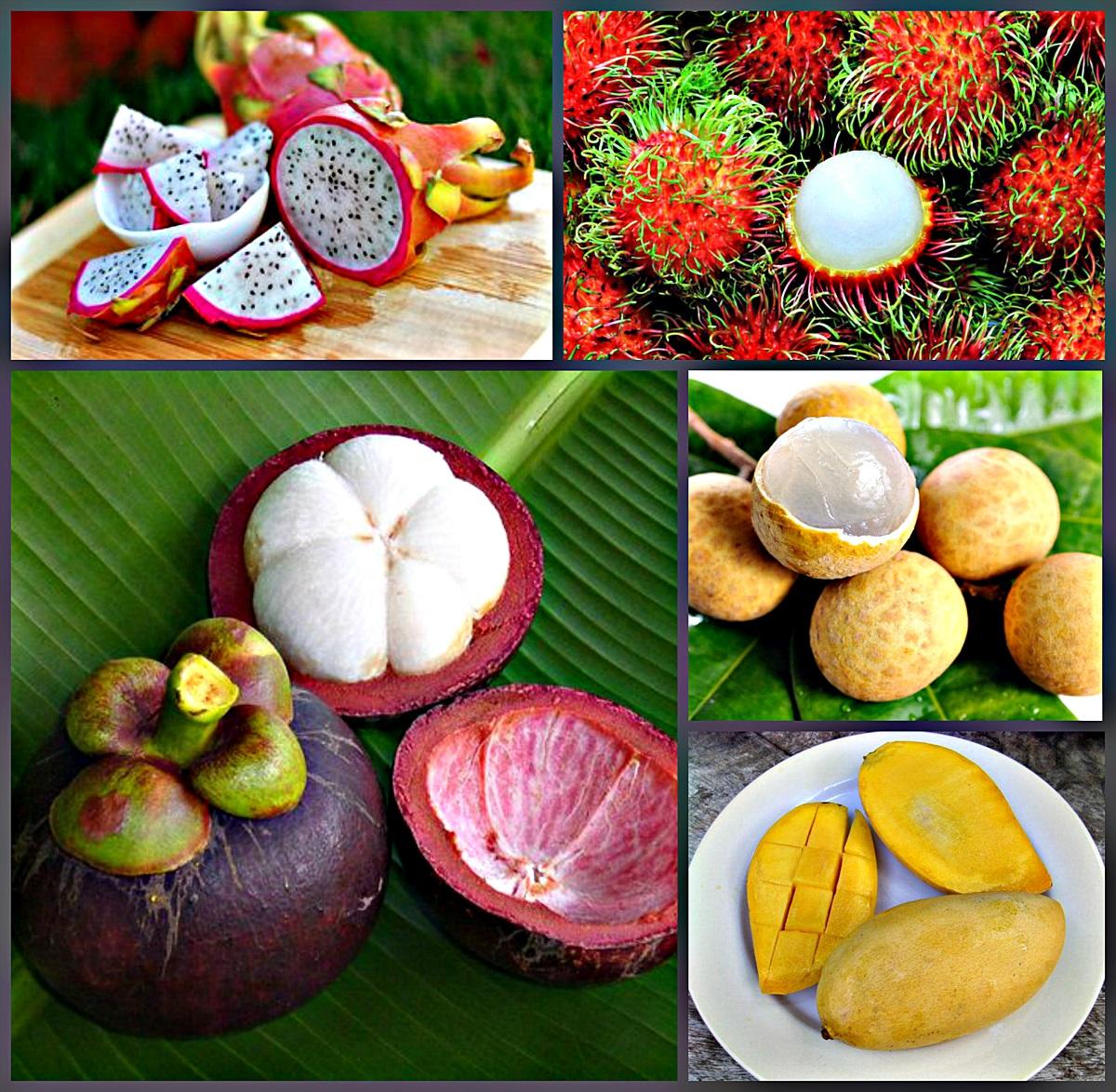 рекламу фрукты таиланда с фото и названиями толшько